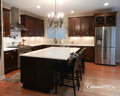 Kitchen Remodeling in Park Ridge by Cabinet Pros